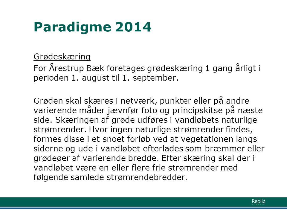Paradigme 2014