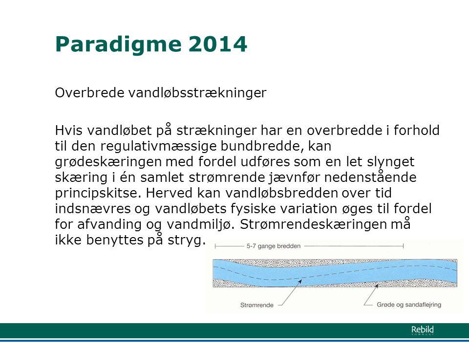Paradigme 2014 Overbrede vandløbsstrækninger