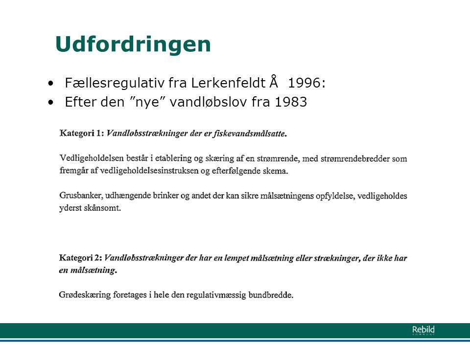 Udfordringen Fællesregulativ fra Lerkenfeldt Å 1996: