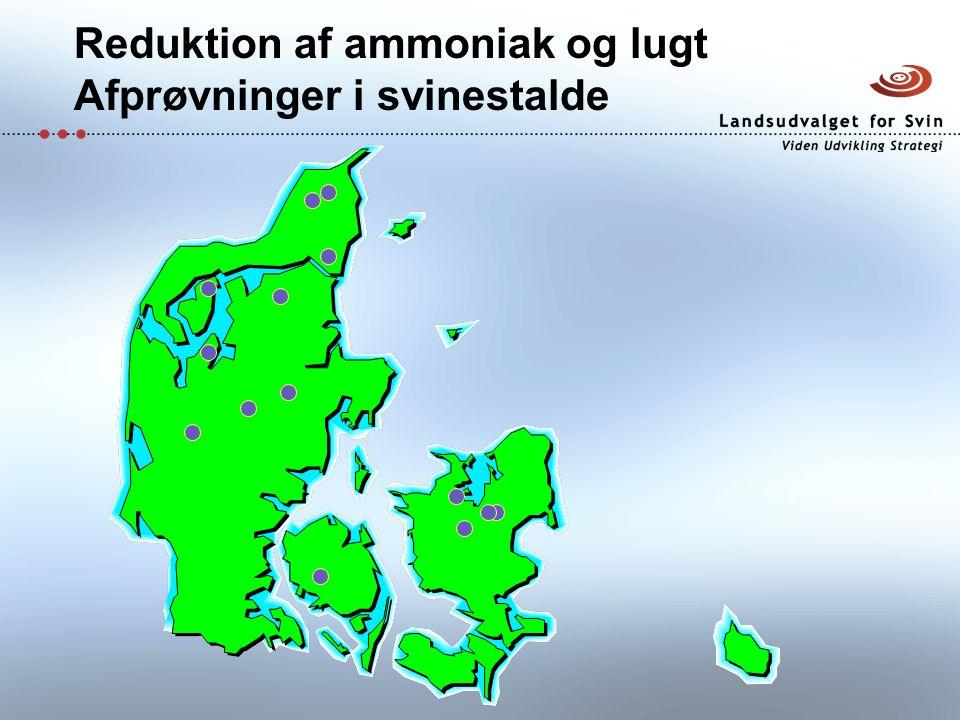 Reduktion af ammoniak og lugt Afprøvninger i svinestalde