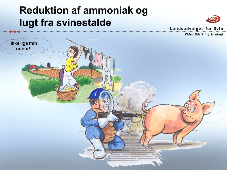 Reduktion af ammoniak og lugt fra svinestalde