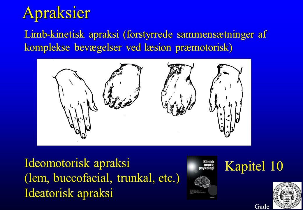 Apraksier Limb-kinetisk apraksi (forstyrrede sammensætninger af komplekse bevægelser ved læsion præmotorisk)