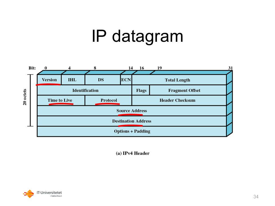 IP datagram Protocol: TCP, UDP m.m. Version: IPv4 eller IPv6