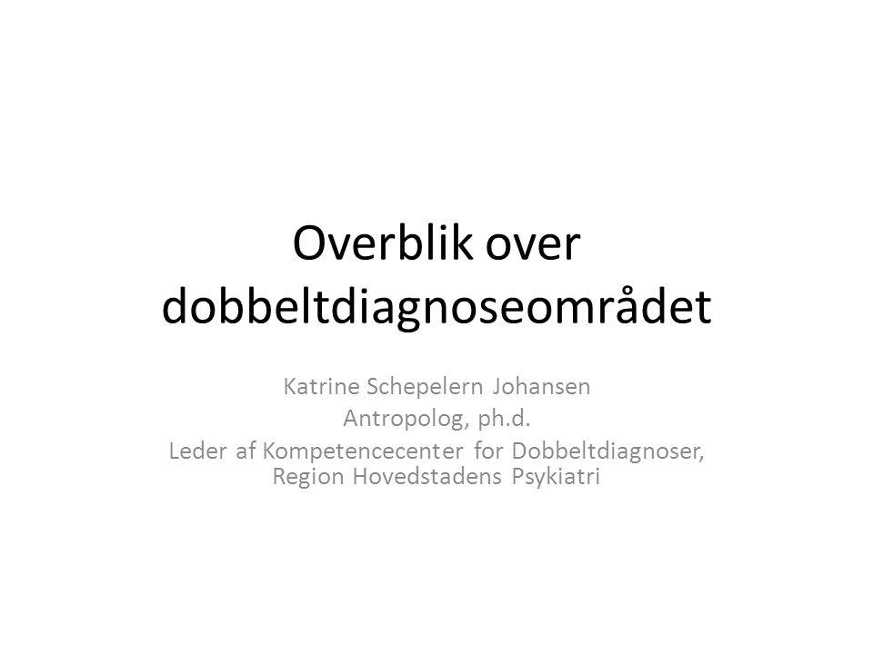 Overblik over dobbeltdiagnoseområdet