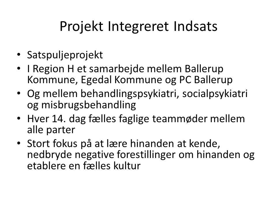 Projekt Integreret Indsats