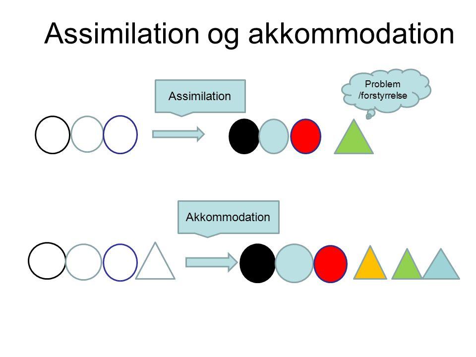 Assimilation og akkommodation