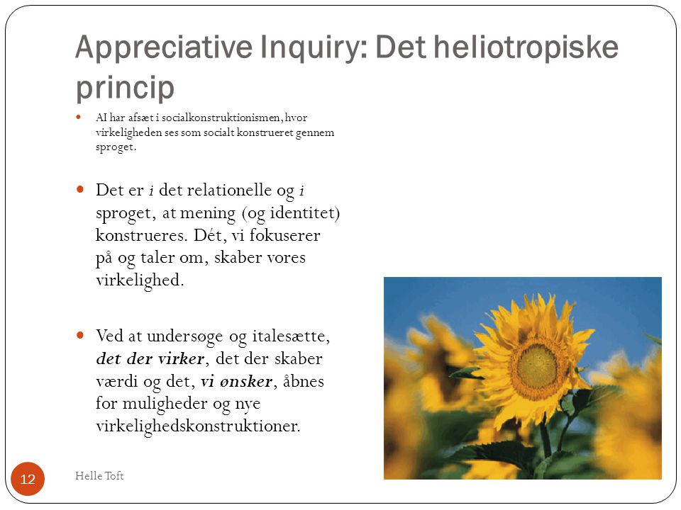 Appreciative Inquiry: Det heliotropiske princip