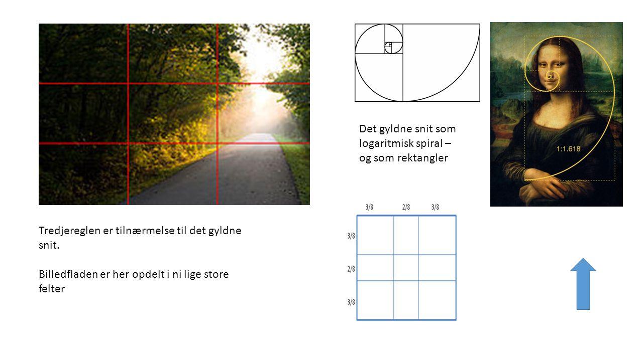 Det gyldne snit som logaritmisk spiral – og som rektangler