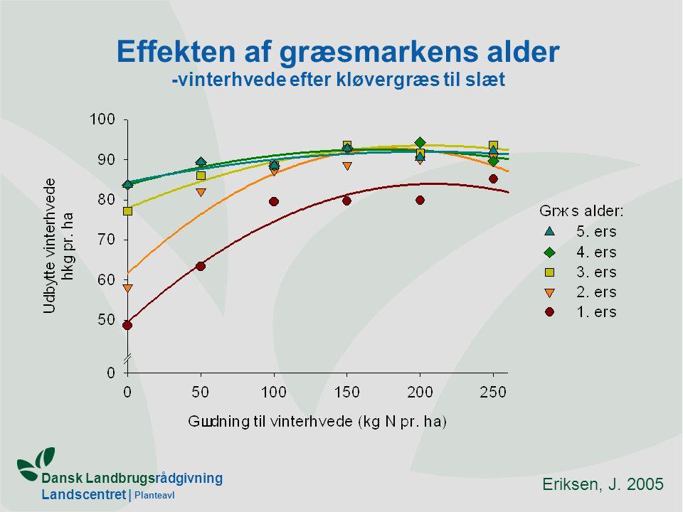 Effekten af græsmarkens alder -vinterhvede efter kløvergræs til slæt