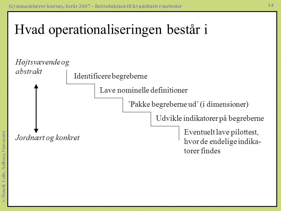 Hvad operationaliseringen består i