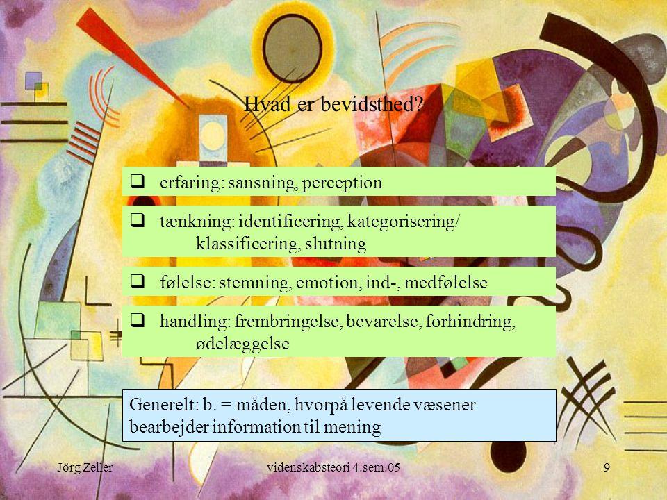 Hvad er bevidsthed erfaring: sansning, perception