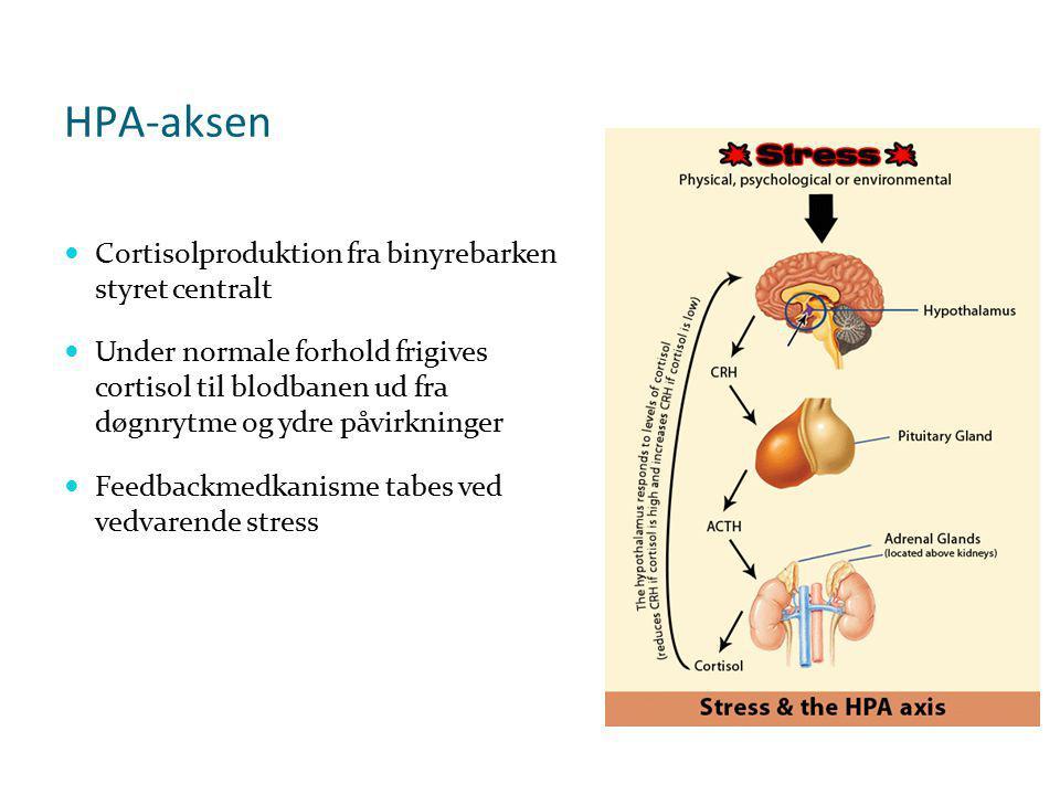 HPA-aksen Cortisolproduktion fra binyrebarken styret centralt