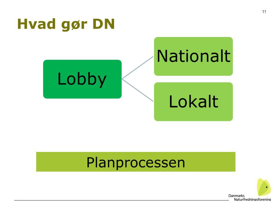 Hvad gør DN Planprocessen
