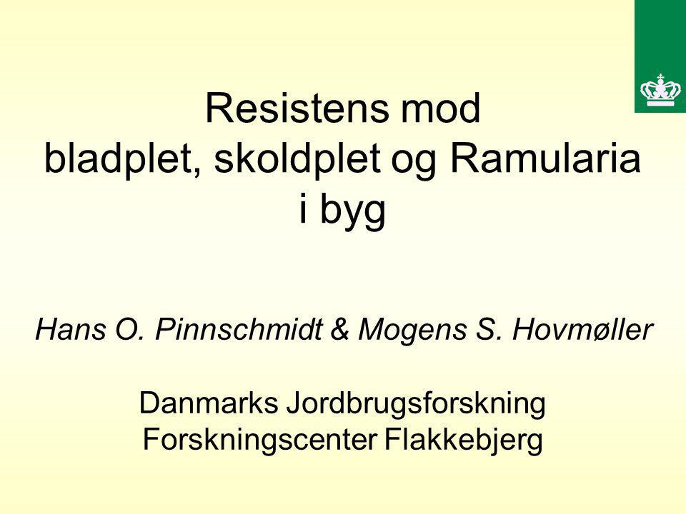 Resistens mod bladplet, skoldplet og Ramularia i byg