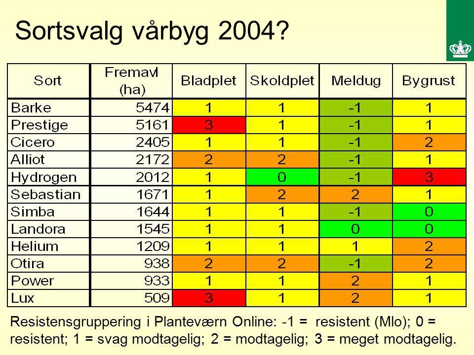 Sortsvalg vårbyg 2004