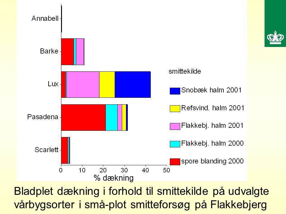 % dækning Bladplet dækning i forhold til smittekilde på udvalgte vårbygsorter i små-plot smitteforsøg på Flakkebjerg.
