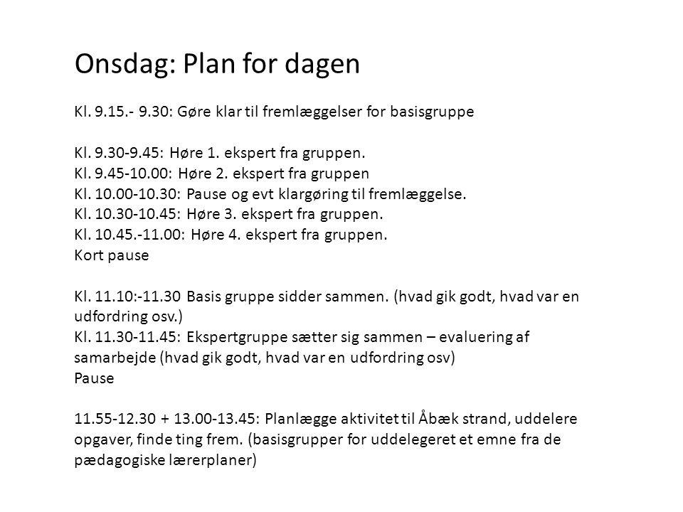 Onsdag: Plan for dagen Kl. 9.15.- 9.30: Gøre klar til fremlæggelser for basisgruppe. Kl. 9.30-9.45: Høre 1. ekspert fra gruppen.