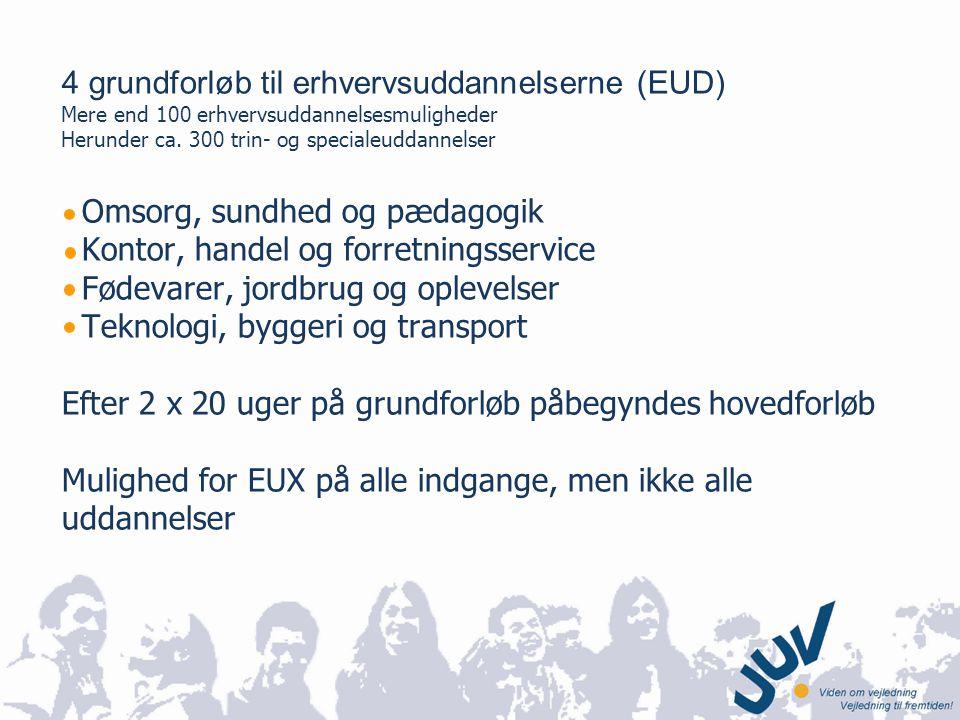 4 grundforløb til erhvervsuddannelserne (EUD)