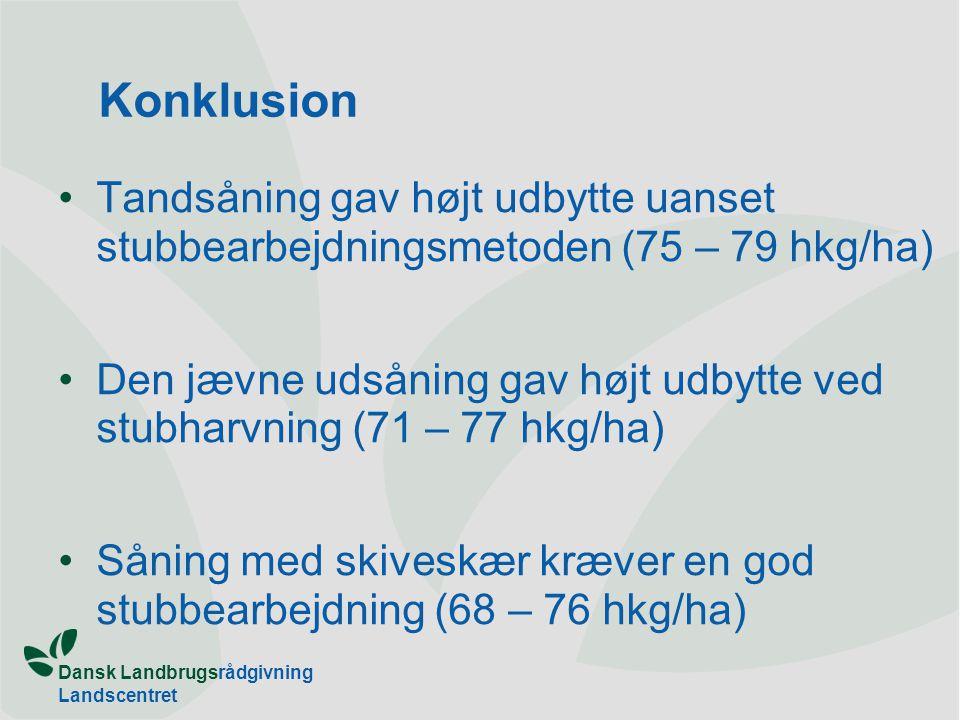 Konklusion Tandsåning gav højt udbytte uanset stubbearbejdningsmetoden (75 – 79 hkg/ha)