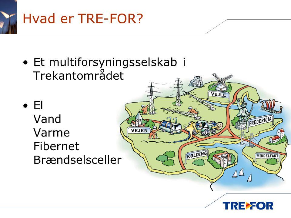 Hvad er TRE-FOR Et multiforsyningsselskab i Trekantområdet