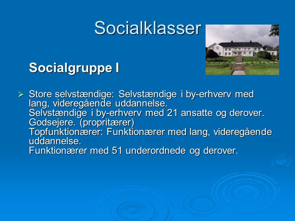 Socialklasser Socialgruppe I