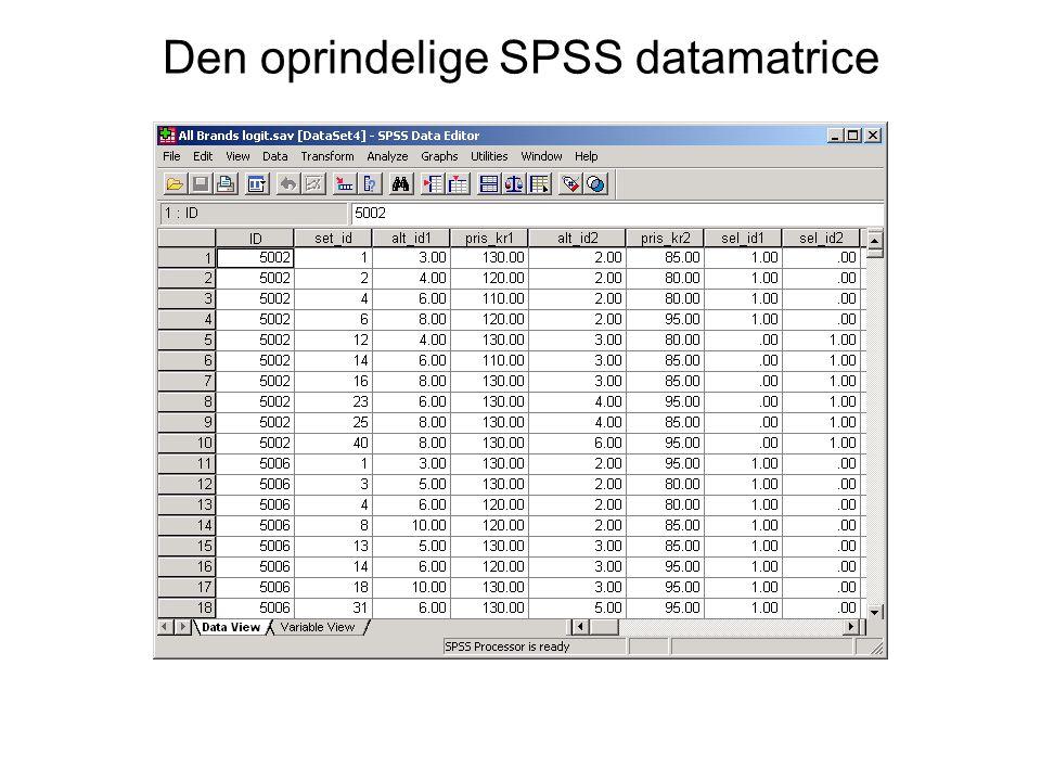 Den oprindelige SPSS datamatrice