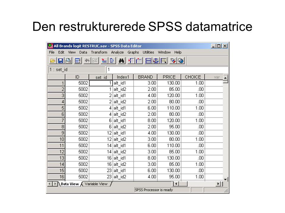 Den restrukturerede SPSS datamatrice