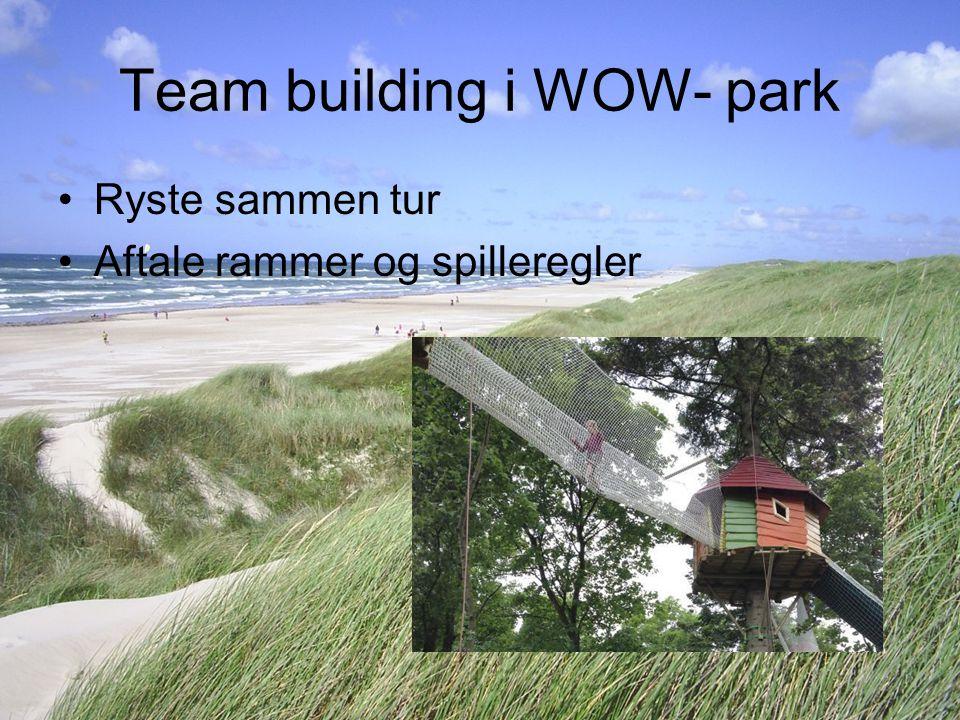Team building i WOW- park