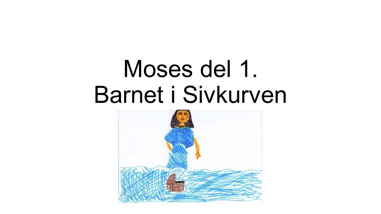 Moses del 1. Barnet i Sivkurven
