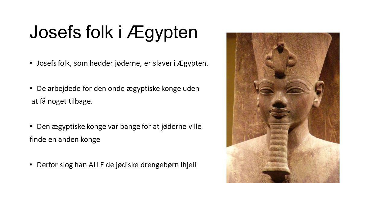 Josefs folk i Ægypten Josefs folk, som hedder jøderne, er slaver i Ægypten. De arbejdede for den onde ægyptiske konge uden.