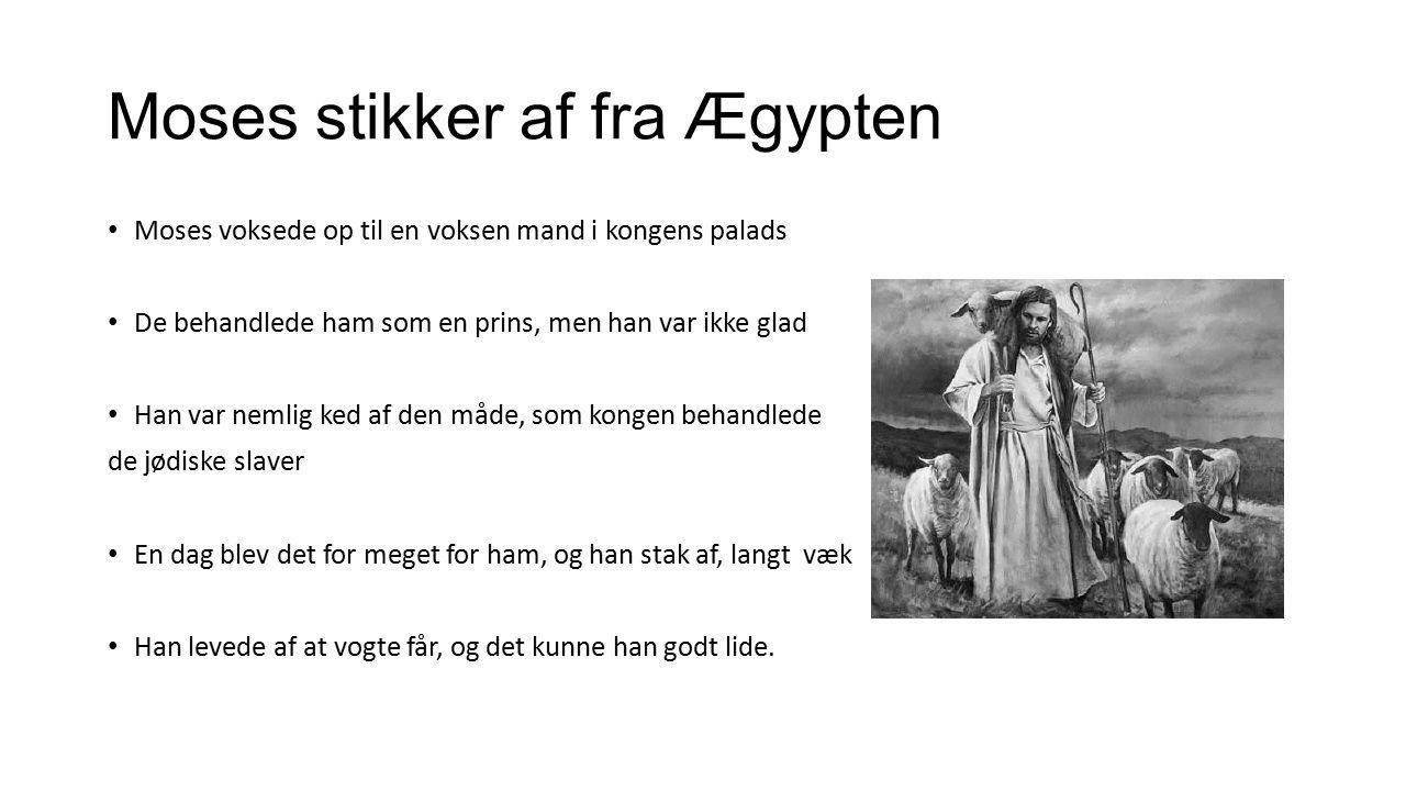 Moses stikker af fra Ægypten