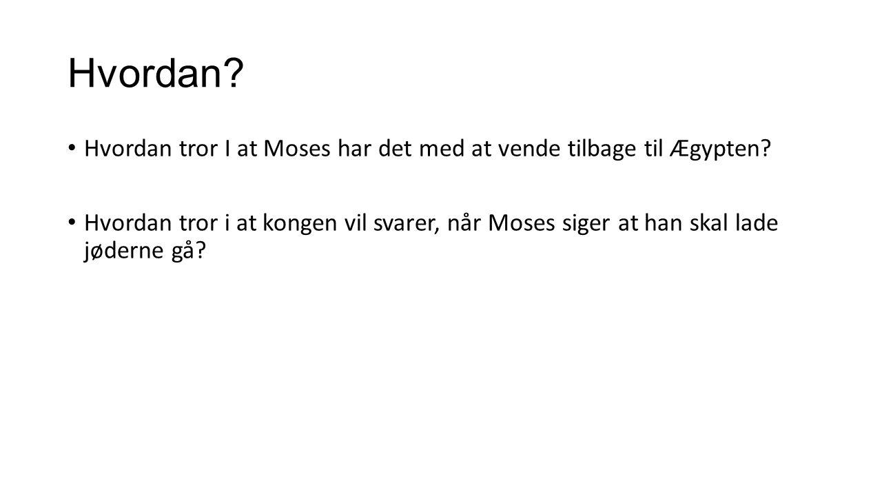 Hvordan Hvordan tror I at Moses har det med at vende tilbage til Ægypten