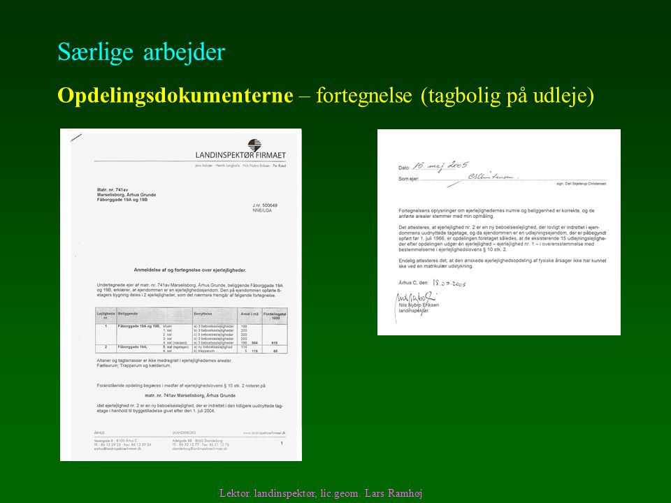 Særlige arbejder Opdelingsdokumenterne – fortegnelse (tagbolig på udleje) Lektor.