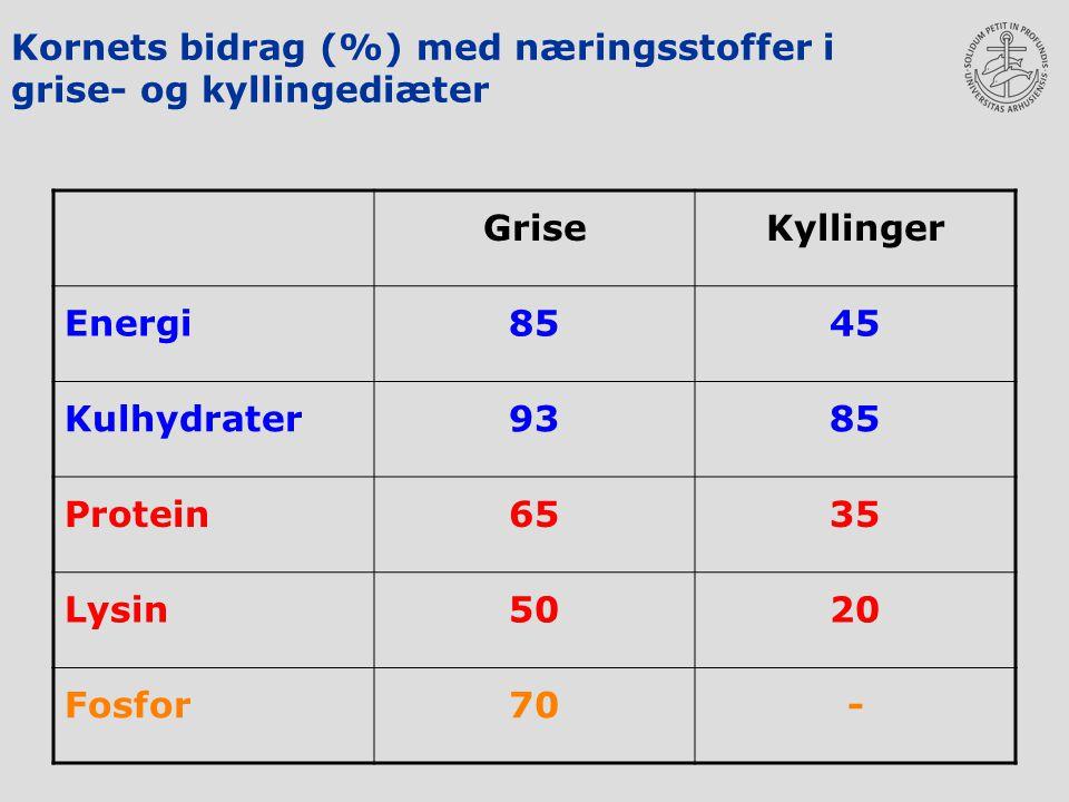 Kornets bidrag (%) med næringsstoffer i grise- og kyllingediæter