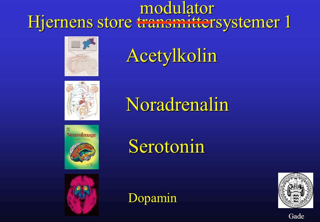 Acetylkolin Noradrenalin Serotonin modulator