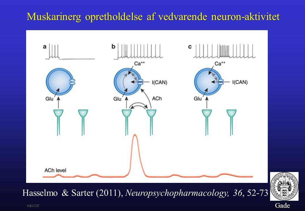 Muskarinerg opretholdelse af vedvarende neuron-aktivitet