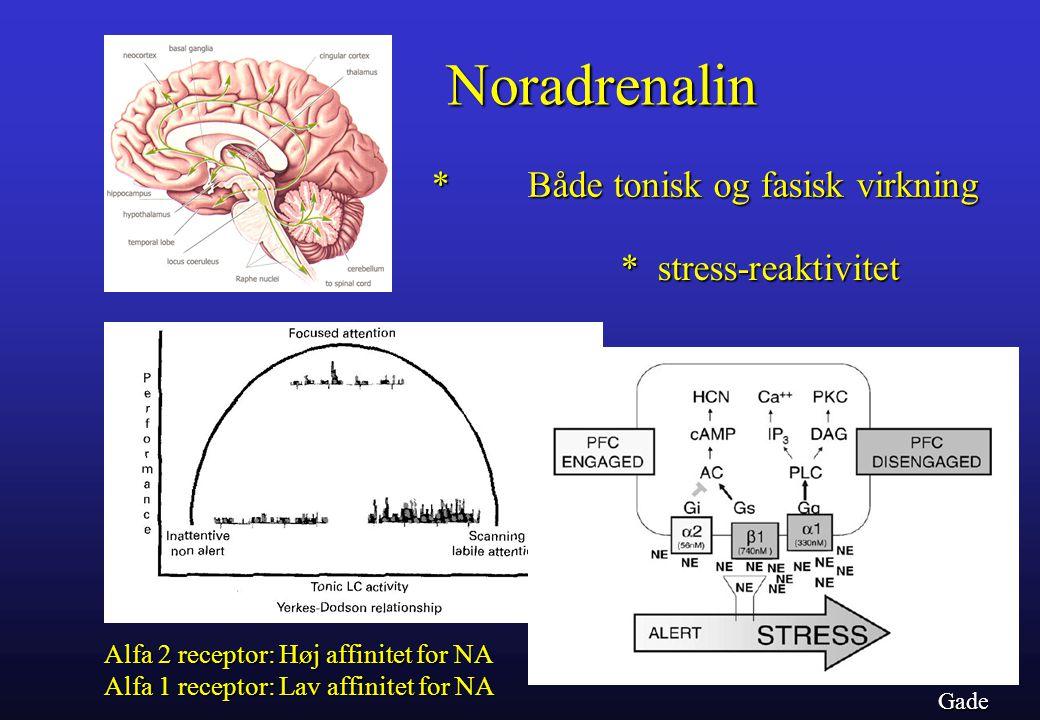 Noradrenalin * Både tonisk og fasisk virkning * stress-reaktivitet