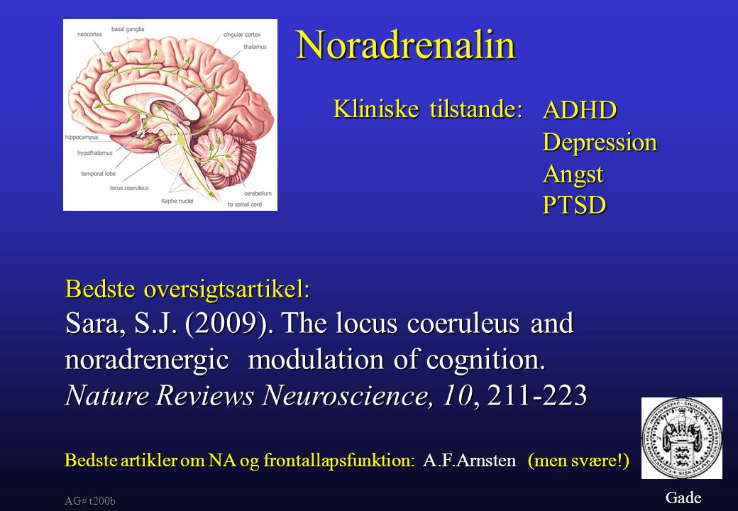 Noradrenalin Sara, S.J. (2009). The locus coeruleus and