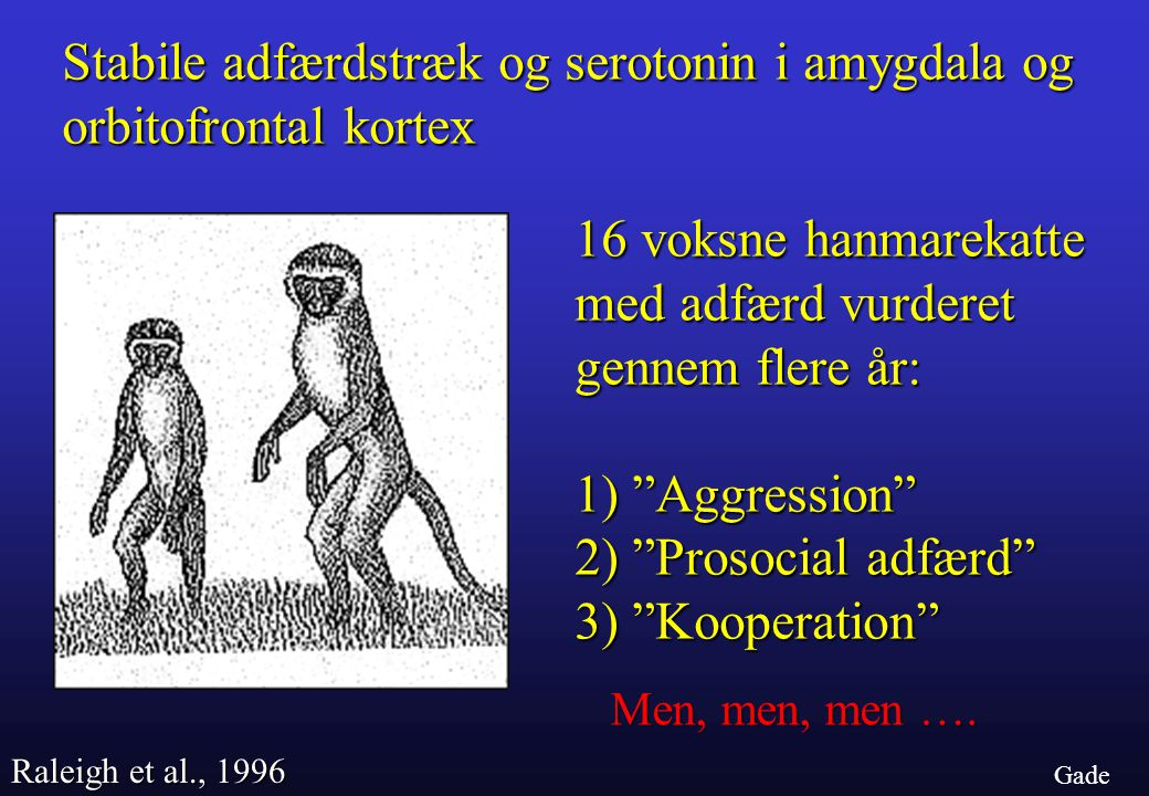Stabile adfærdstræk og serotonin i amygdala og orbitofrontal kortex