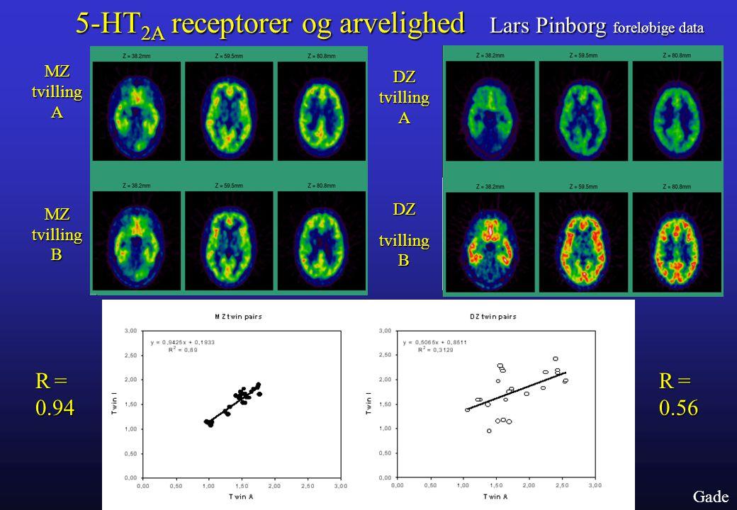 5-HT2A receptorer og arvelighed Lars Pinborg foreløbige data