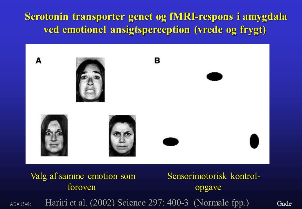 Serotonin transporter genet og fMRI-respons i amygdala ved emotionel ansigtsperception (vrede og frygt)