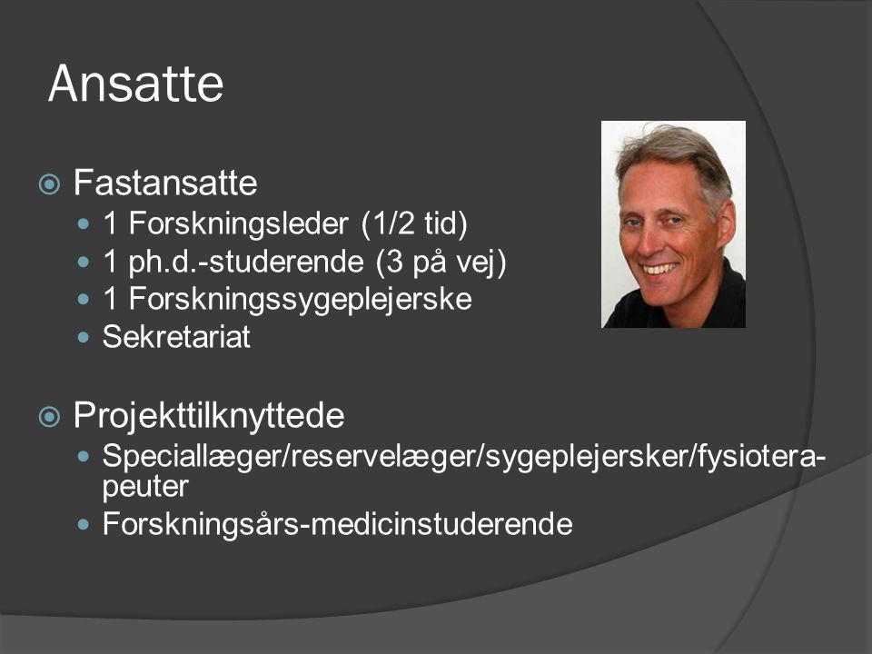 Ansatte Fastansatte Projekttilknyttede 1 Forskningsleder (1/2 tid)
