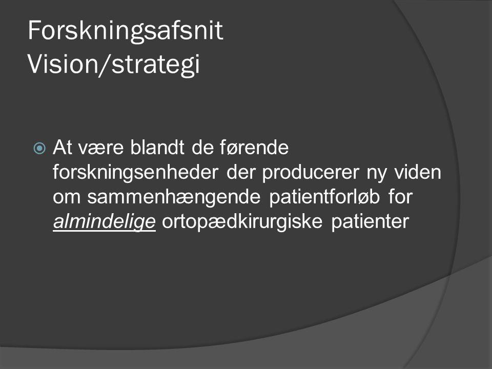 Forskningsafsnit Vision/strategi