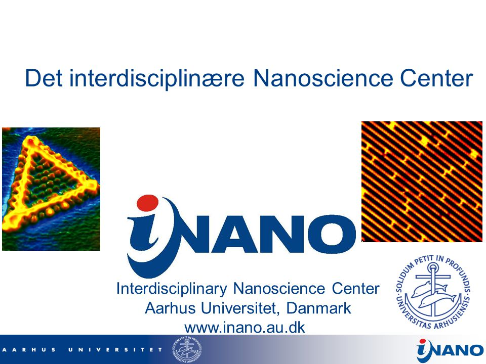 Det interdisciplinære Nanoscience Center