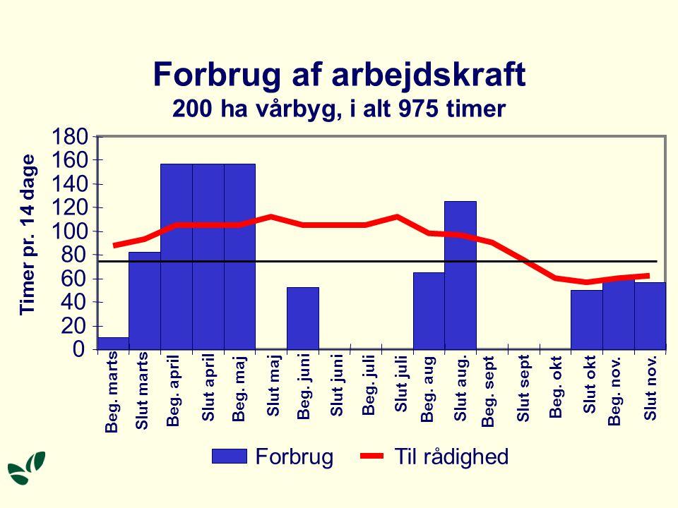Forbrug af arbejdskraft 200 ha vårbyg, i alt 975 timer