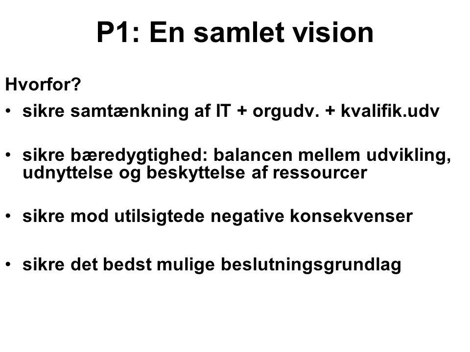 P1: En samlet vision Hvorfor