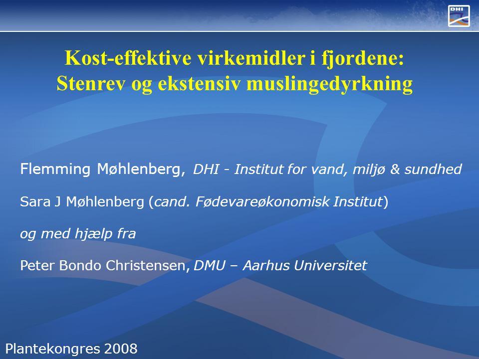 Kost-effektive virkemidler i fjordene: