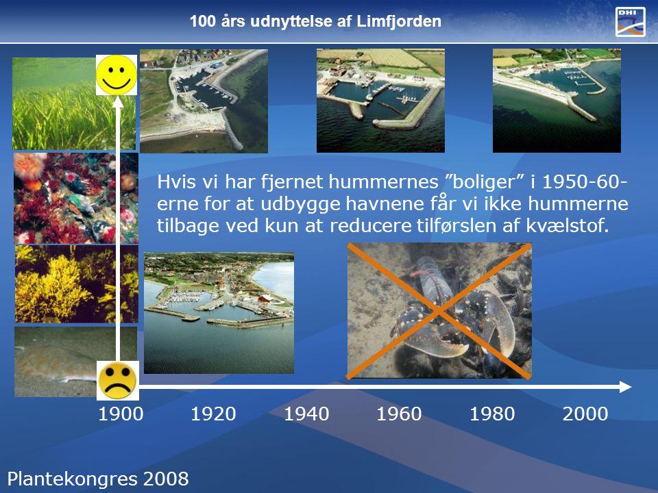 100 års udnyttelse af Limfjorden