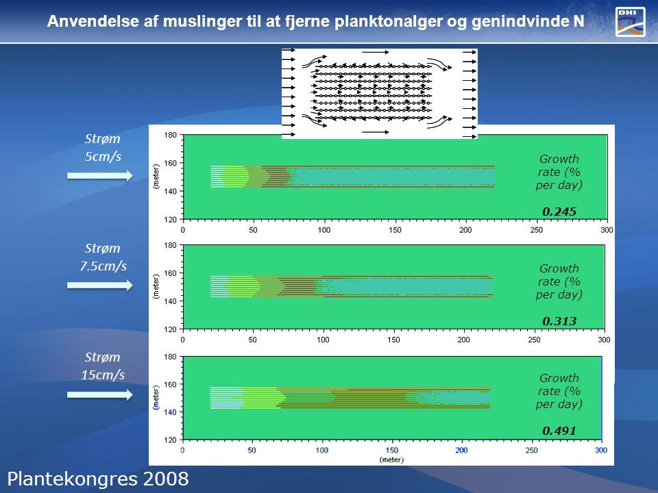 Anvendelse af muslinger til at fjerne planktonalger og genindvinde N