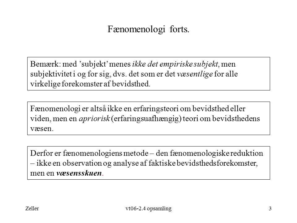 Fænomenologi forts.